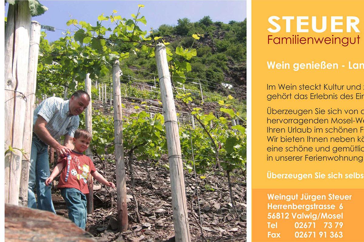 Winery Jürgen Steuer in Valwig